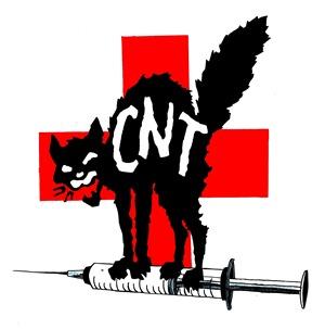 http://www.cnt-f.org/IMG/jpg/chat-sant_E9-3.jpg